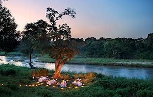 Dinner is prepared under an ancient riverside tree at Lion Sands Narina Lodge.