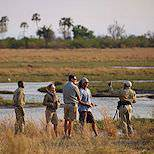 A guided bush walk in the Okavango Delta.