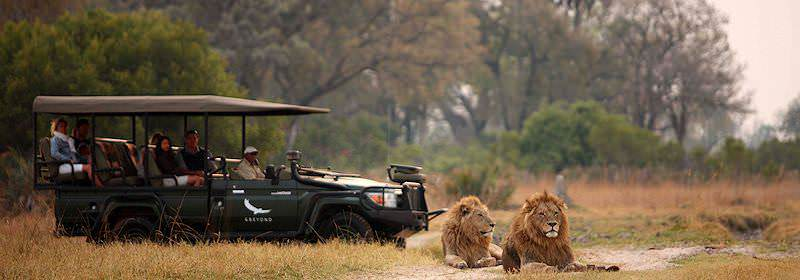 A game drive at Sandibe Safari Lodge in Botswana's Okavango Delta.