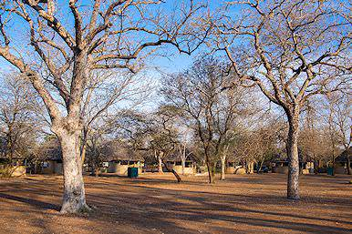 One of the basic rest camps in the Kruger National Park.