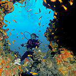 Scuba diving off the coast of Mozambique.