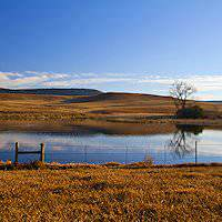 A tranquil winter scene in the Free State.
