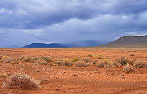 The ruddy, barren landscape of the Tankwa Karoo National Park.