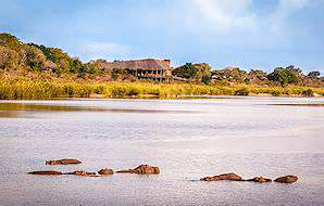 Hippos bask in the waters of the Sabi River in front of Lower Sabie Rest Camp.