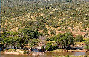 Olifants Rest Camp is named for the river which it overlooks.