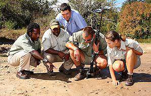 Guests enjoy an informative bush walk in the Greater Kruger National Park.