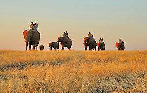 An elephant-back safari in the wilderness of Southern Africa.