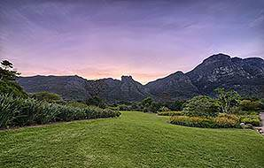 Manicured lawns at Kirstenbosch Botanical Gardens.