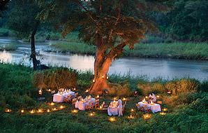 Dinner is served under an ancient tree below Lion Sands Tinga Lodge.