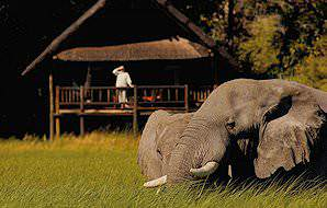 A guest at a safari lodge observes elephants grazing below.