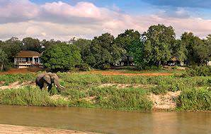 An elephant drinks from the river in front of Dulini Lodge.