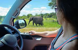 South Africa Vacations - African Sky
