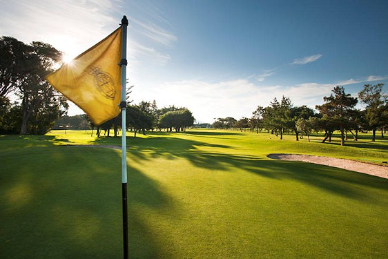 Mist settles over the Royal Cape Golf Club in the early hours of the morning.
