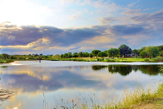 Wildlife frequently roams across the fairways of Skukuza's golf course.