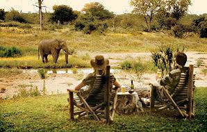 Guests at Motswari observe an elephant across the water.
