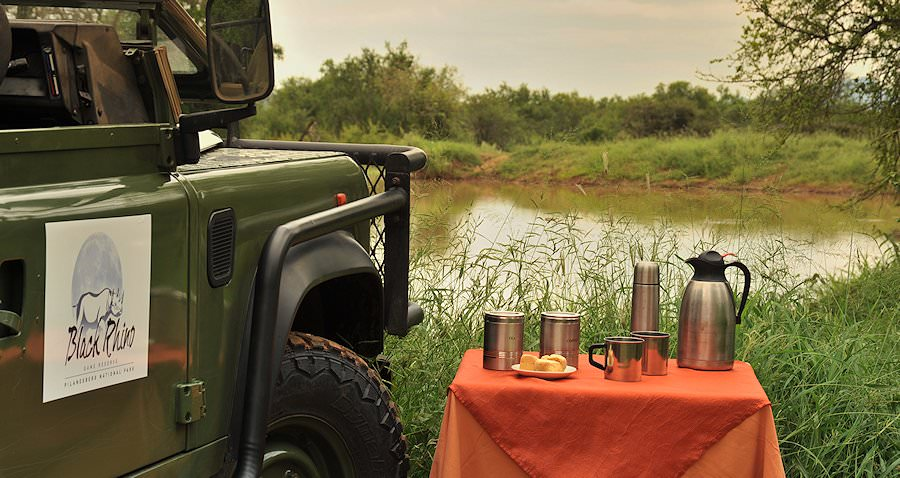 Coffee and snacks placed next to a safari vehicle during a game drive in Pilanesberg.