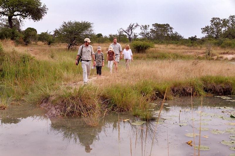 A guided bush walk in the wilderness of the Sabi Sand.