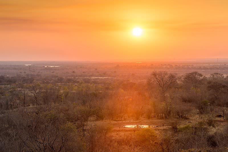 The sun sets over the bushveld of the Zambezi.