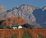 The mountain scenery of the winelands is as breathtaking as the vineyards themselves.