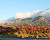 The Cape winelands are characterized by lush valleys and towering mountains.