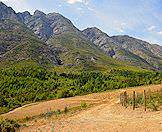 Mountains melt into the verdant valleys of the Cape winelands.