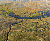 The Okavango Delta is the verdant jewel of Sub-Saharan Africa.