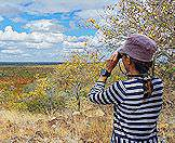 A traveler looks out over the wilderness of the Kruger National Park.