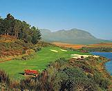 Old trees encircle the fairways at Erinvale Golf Course in Somerset West.