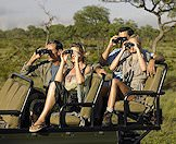 Guests enjoying a game drive in the Sabi Sand.