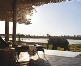 An elephant wanders past a suite at Eagle Island Lodge.