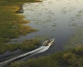 A powerboat slices across the surface of the Okavango Delta.