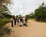 Guests at Lion Sands stop for a refreshment in the bush.