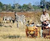 Guests enjoy champagne while observing a pair of zebras.