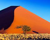 The colossal dune known as 'Big Daddy' in Namibia's Sossusvlei region.