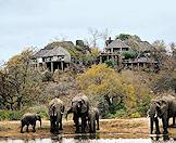 Elephants drink from a dam below Leopard Hills in the Sabi Sand.