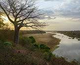 Scenery typical of the South Luangwa National Park in Zambia.
