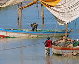 Dhows are used for fishing the plentiful waters of the Indian Ocean.