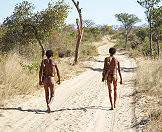 The San are the descendants of Southern Africa's indigenous hunter-gatherers.