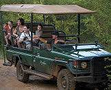 A family enjoying a game drive in Madikwe Game Reserve.