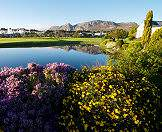 Pearl Valley is one of the premier winelands golf courses.