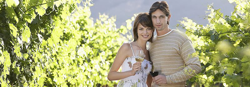 A honeymoon couple enjoying wine tasting in the Cape winelands.