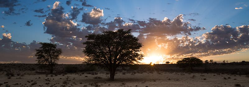 The sunrise above a private game reserve in South Africa.
