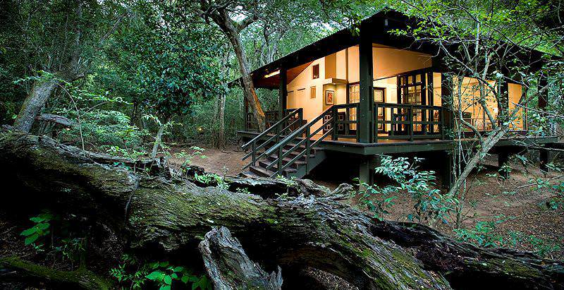 The enchanting environment that surrounds Phinda Forest Lodge in the Phinda Private Game Reserve.