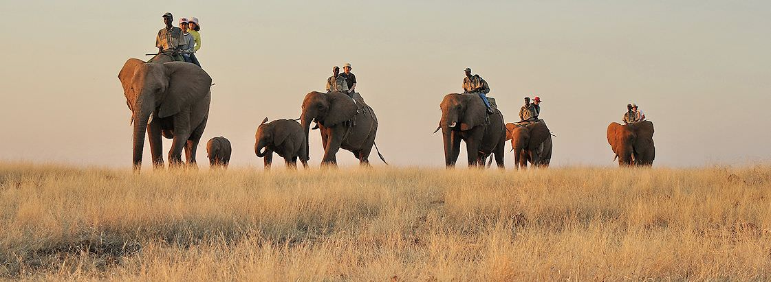 An unforgettable elephant-back safari in South Africa.