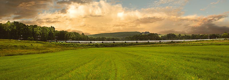 The Rovos Rail trundles across the lush green landscape of the Western Cape.