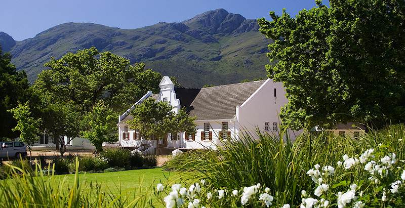 Typical Cape Dutch architecture and manicured gardens in the Cape winelands.