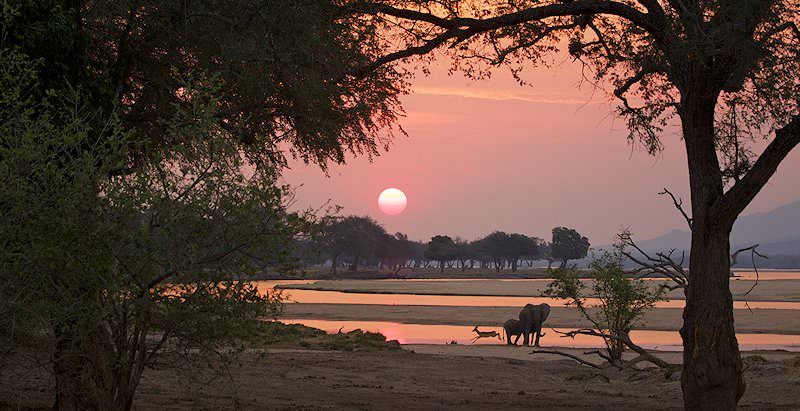 A spectacular sunset in Mana Pools National Park.