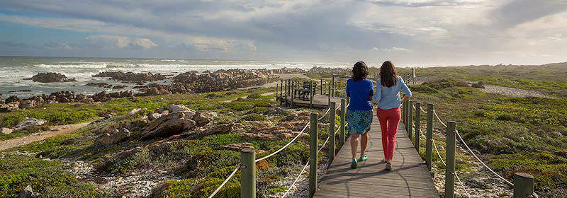 Visitors to Agulhas National Park walk along a demarcated pathway.