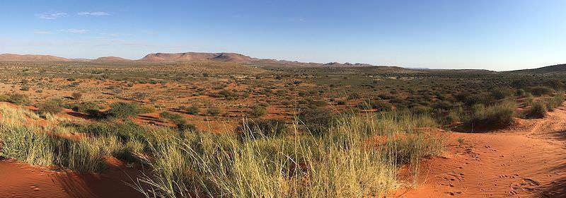 The vast expanse of the Central Kalahari Game Reserve in Botswana.