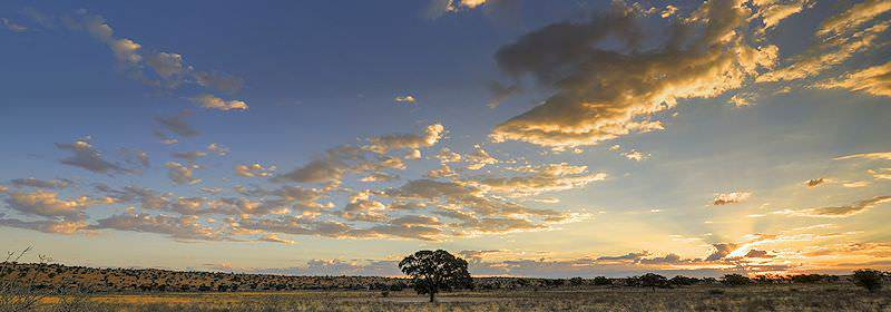 A dramatic sunset over the Kgalagadi Transfrontier Park.